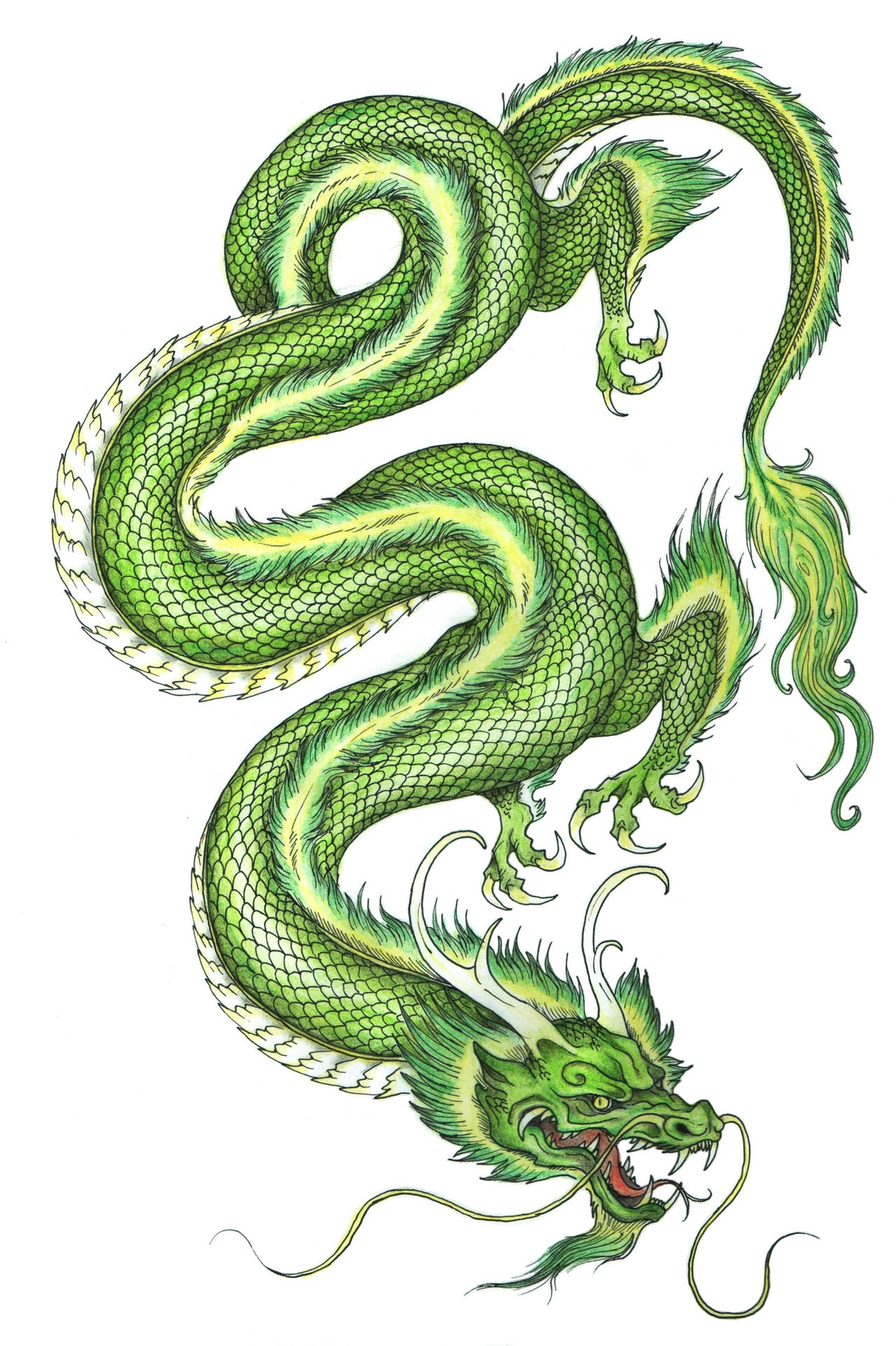 Just a Chinese dragon by Hironi on DeviantArt