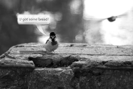 Bread?