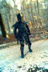 Ebony Warrior by Folkenstal