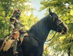 Khajiit on a horse - Elder Scrolls Online