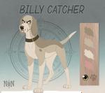 Billy - Character Sheet