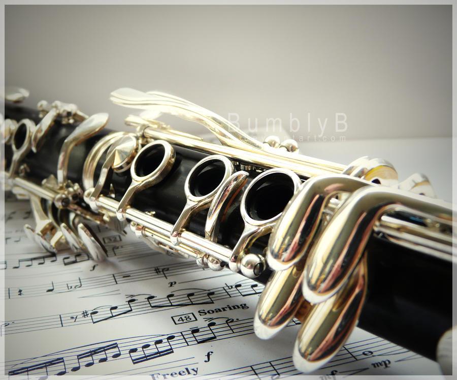 23 Best Clarinet images | Clarinet, Music instruments ...
