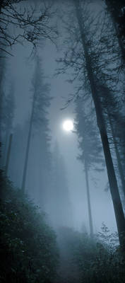 cold atmosphere