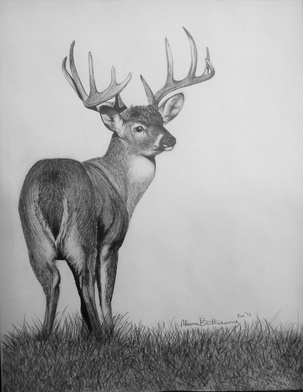 just around the bend by deerhunter2012 on deviantart