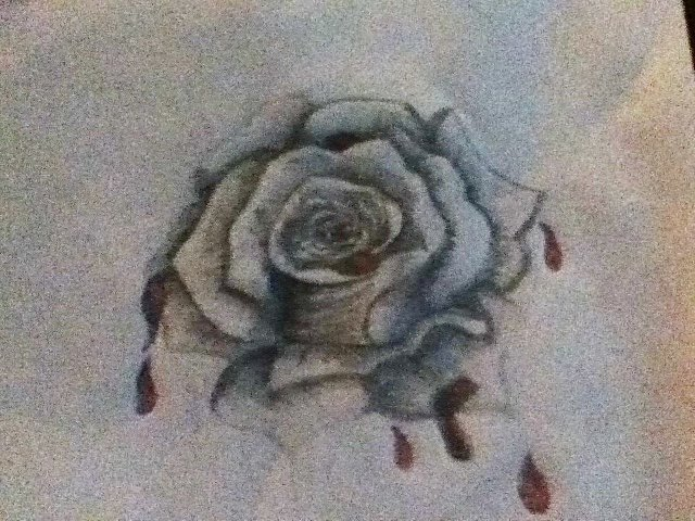 President Snow's Rose Dripping in Blood by therealllama on ...