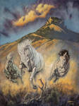 Shadowfax on the Highlands of Rohan