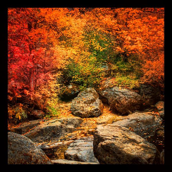Grotto by planetshu
