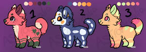 [2/3] OPEN Canine adopts