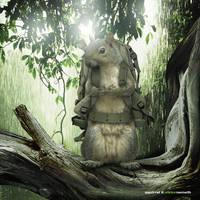 Squirrel by viktornemeth