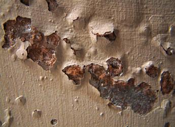 requiemstock: Paint Texture 5