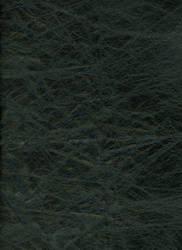 requiemstock: Black Leather