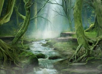 Trees by MeeranUhm