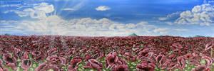 Poppy field by AnnaZLove