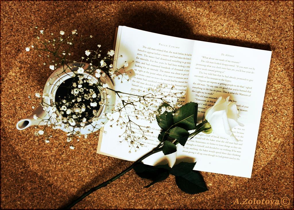 Pleasant Leisure 2 by AnnaZLove