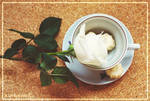 Creamy bonbons and white rose