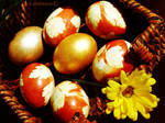 Eggs for Easter 1 by AnnaZLove