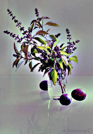 Still life with mint and plums. Dark by AnnaZLove