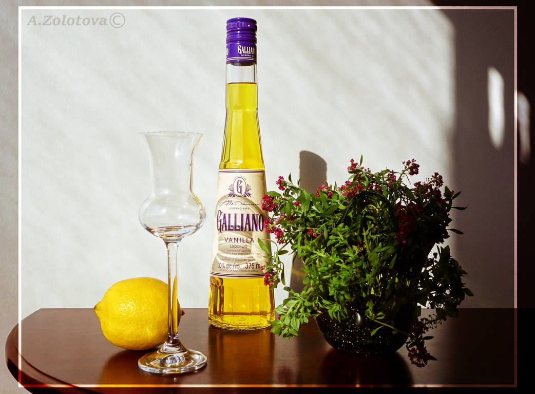 Galliano with Lemon 1 by AnnaZLove
