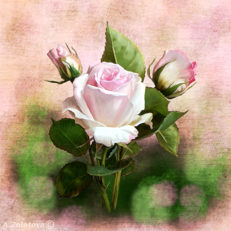 Three pink little Roses by AnnaZLove