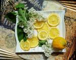 White lilac and lemons 3