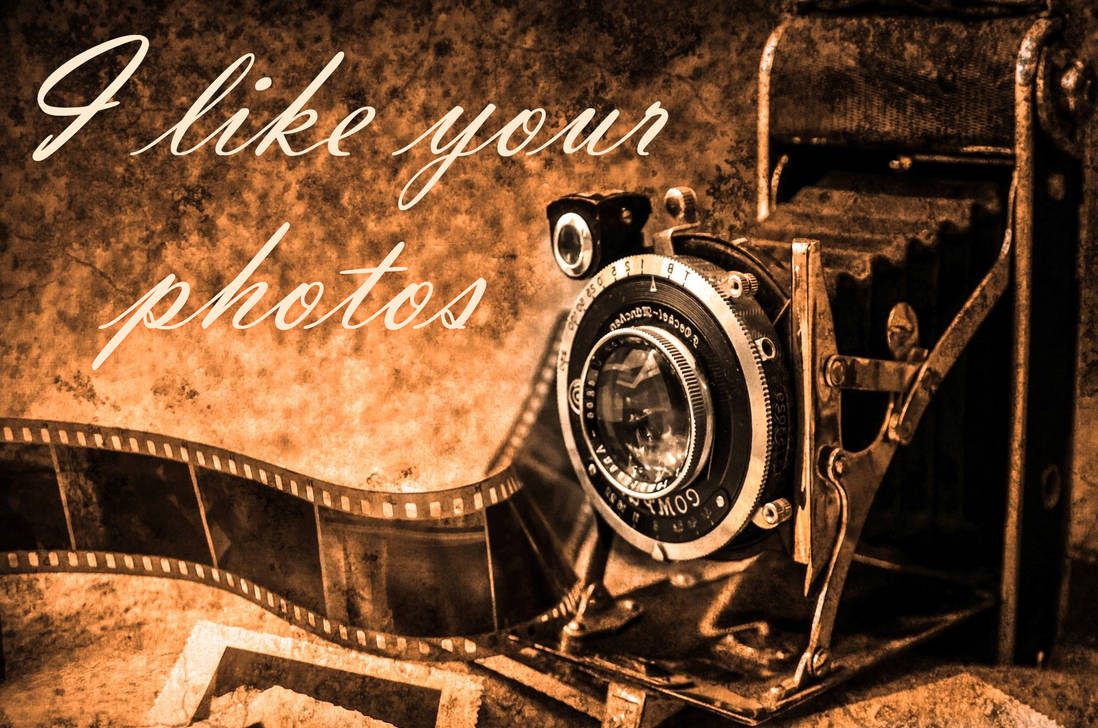 I like your photos. Camera