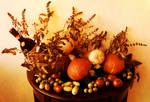 Autumn Festival 2
