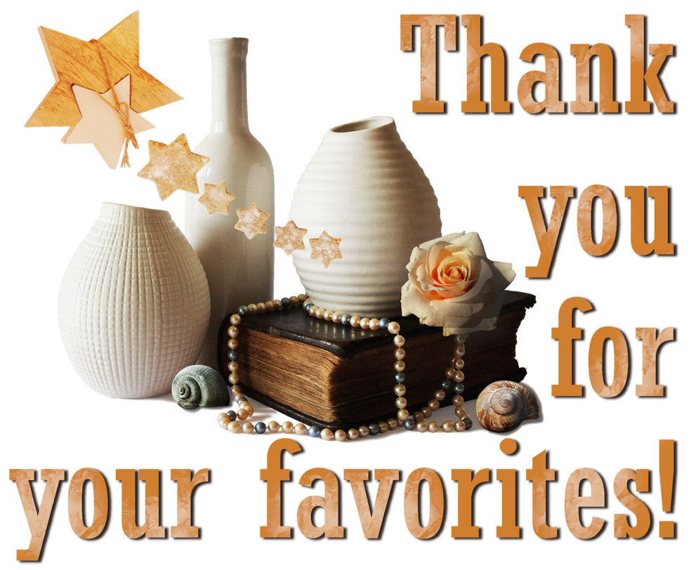 Thank you for your favorites! Vases, rose, stars