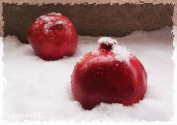 Pomegranates in the Snow 1