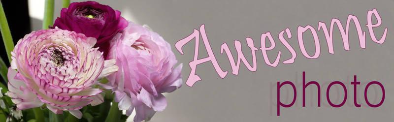 Awesome photo. Ranunculus