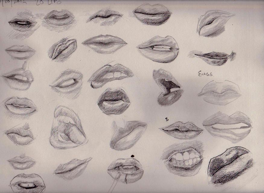 lip study by apcMurray