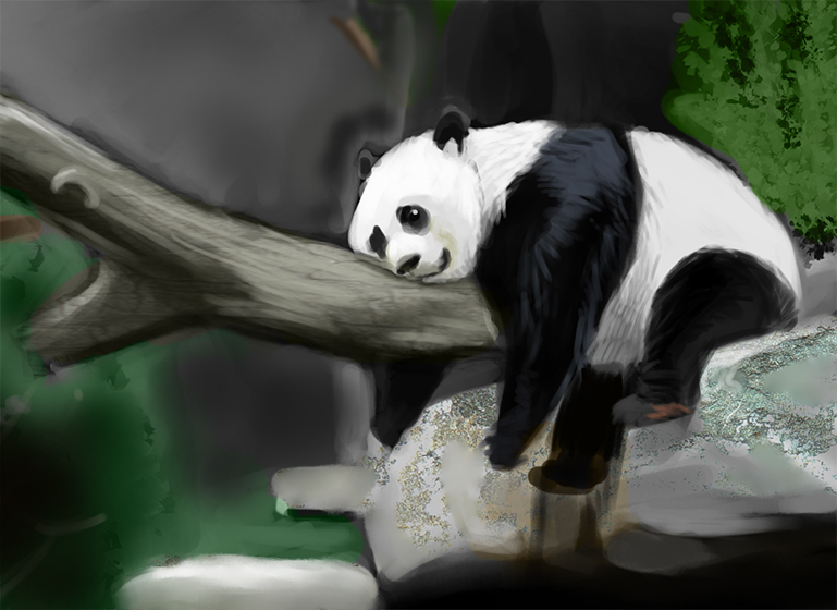 Lazy Panda Wallpaper | www.imgkid.com - The Image Kid Has It!