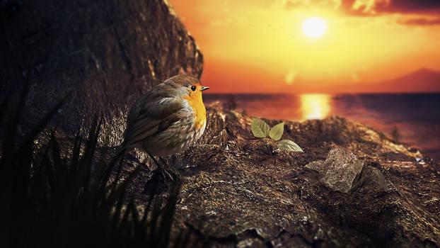 Birdon Rock Render