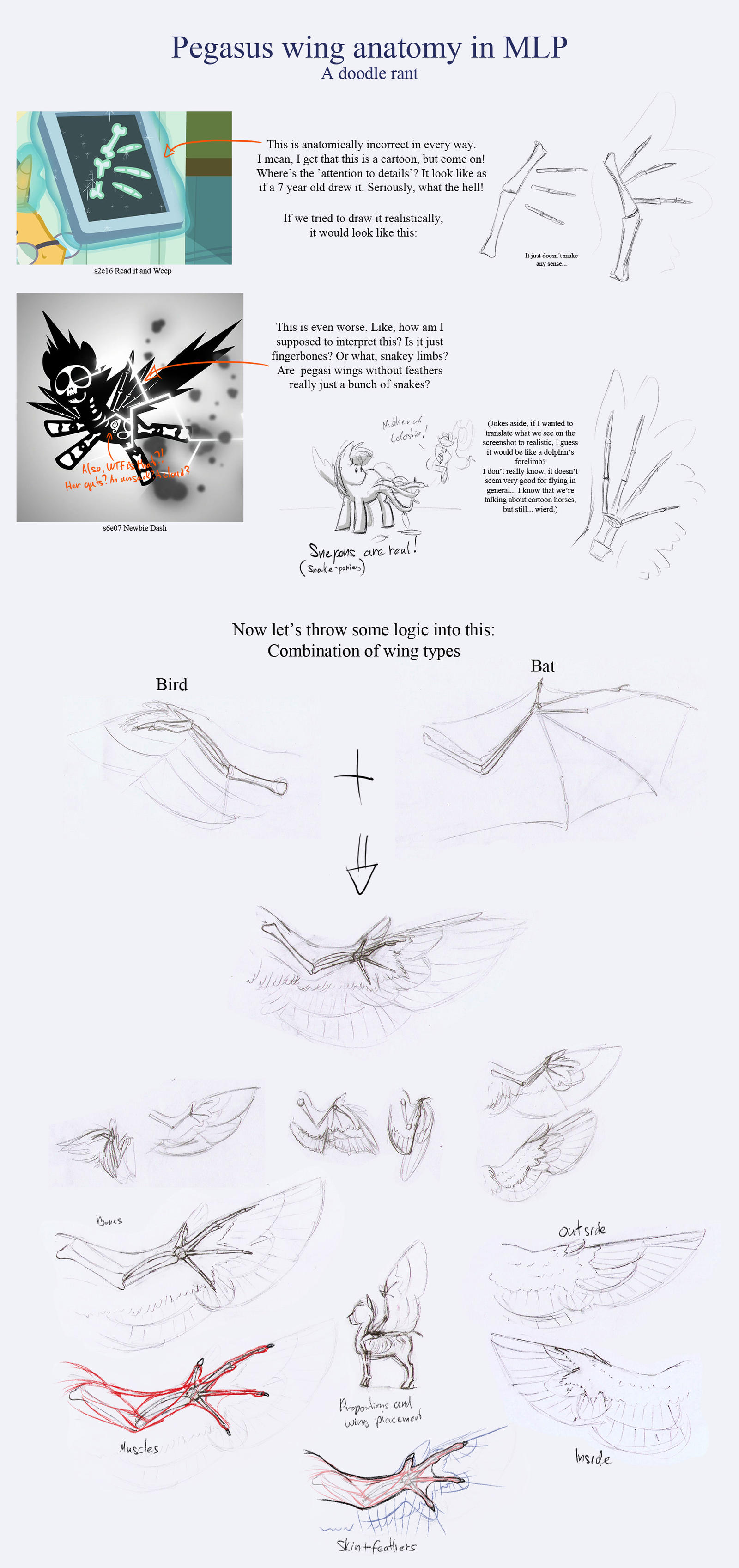 Doodle rant: MLP pegasus wing anatomy by TheSpectral-Wolf on DeviantArt