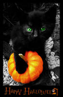 Happy Halloween 2009 by Jenna-Rose