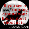 Jacob Black Icon II by MaDeLioncourt