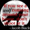 Jacob Black Icon II by MaDeLioncourt