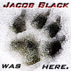 Jacob Black Icon IV by MaDeLioncourt