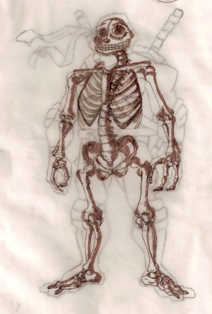 Leonardos Skeletal Structure By Jessie44 On Deviantart