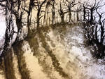 Trees in ink - Advanced Higher Artwork:)