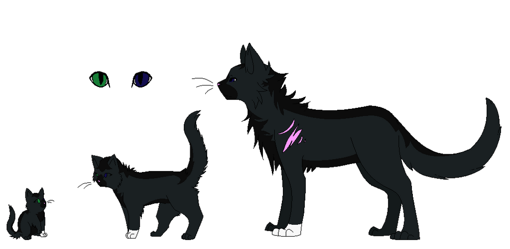 Warrior Cats Ash Tail