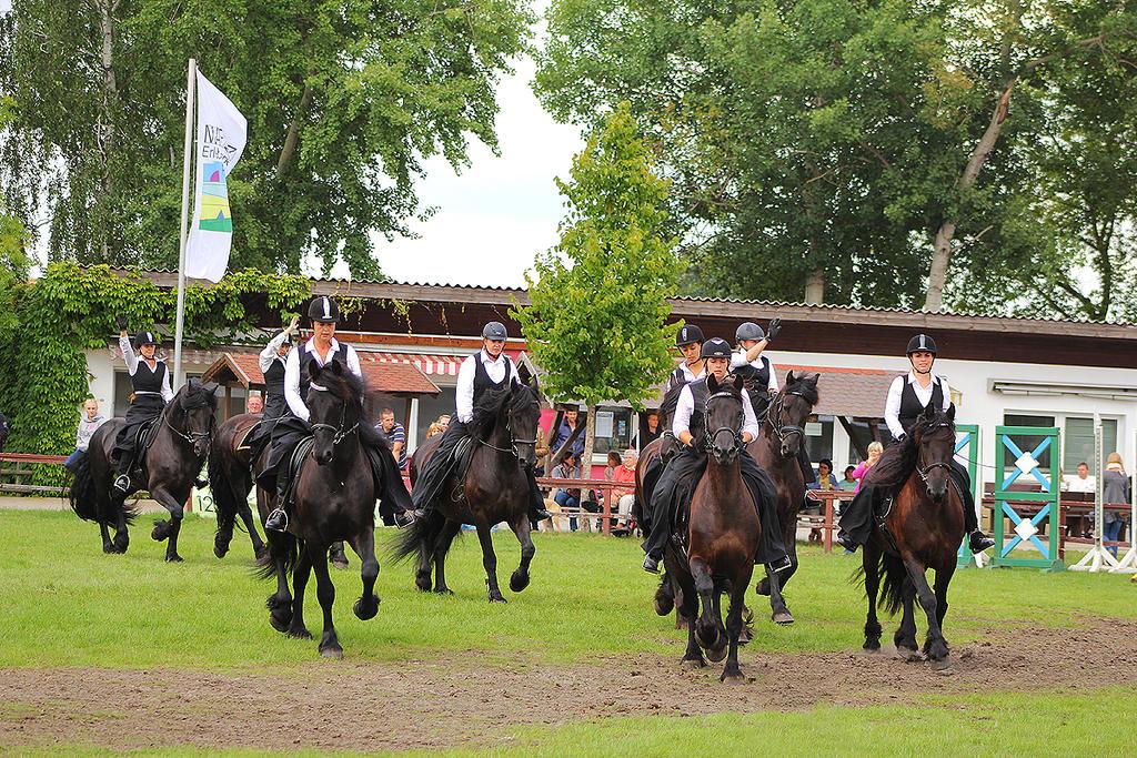Frisian Horses 002 by Valegrim