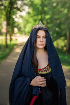 Queen Arwen from LOTR: Two towers