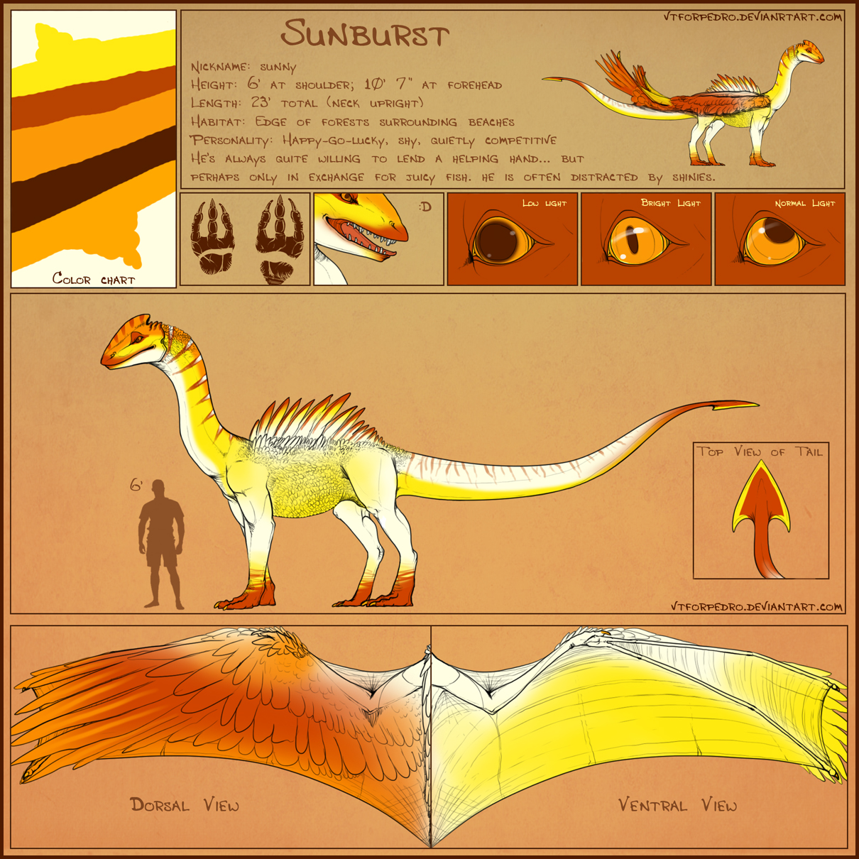 Sunburst Reference Sheet by vtforpedro