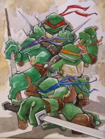 Teenage Mutant Ninja Turtles by MatthewFletcher720