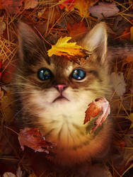 Leaf fall by MariLucia