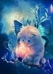 fairy kitty by MariLucia