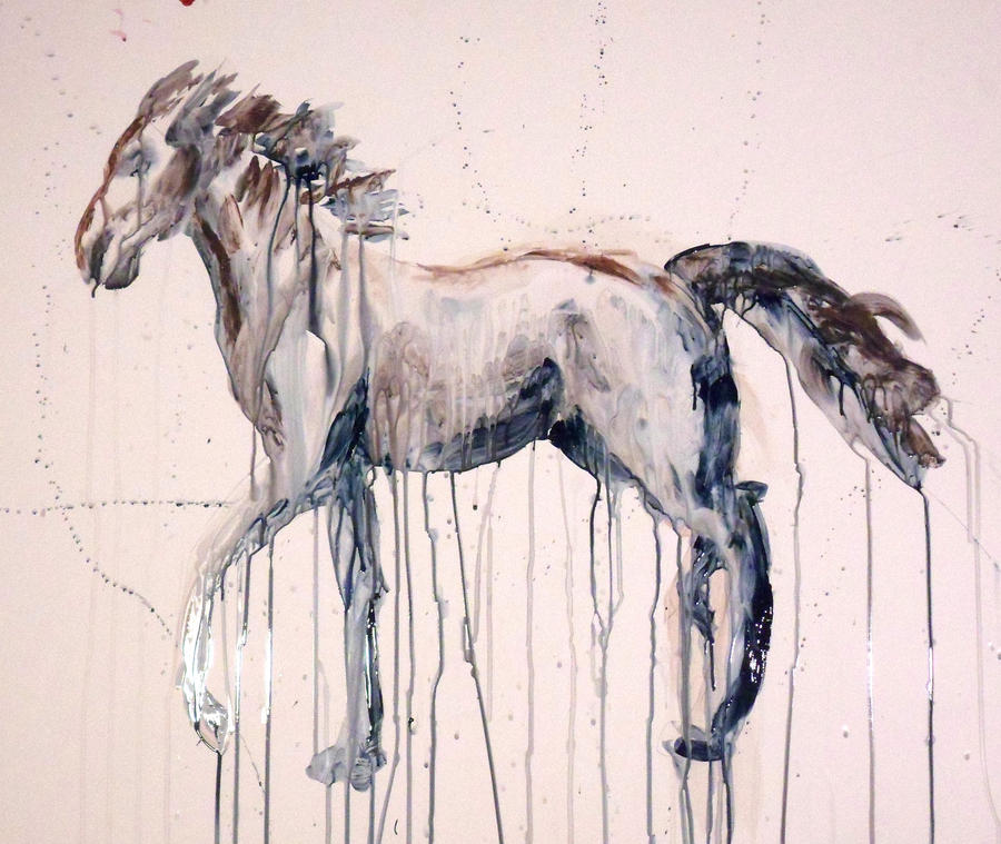 horse dripping by gabylafolle