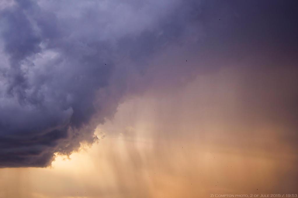Peaceful  summer rain by ZiCompton