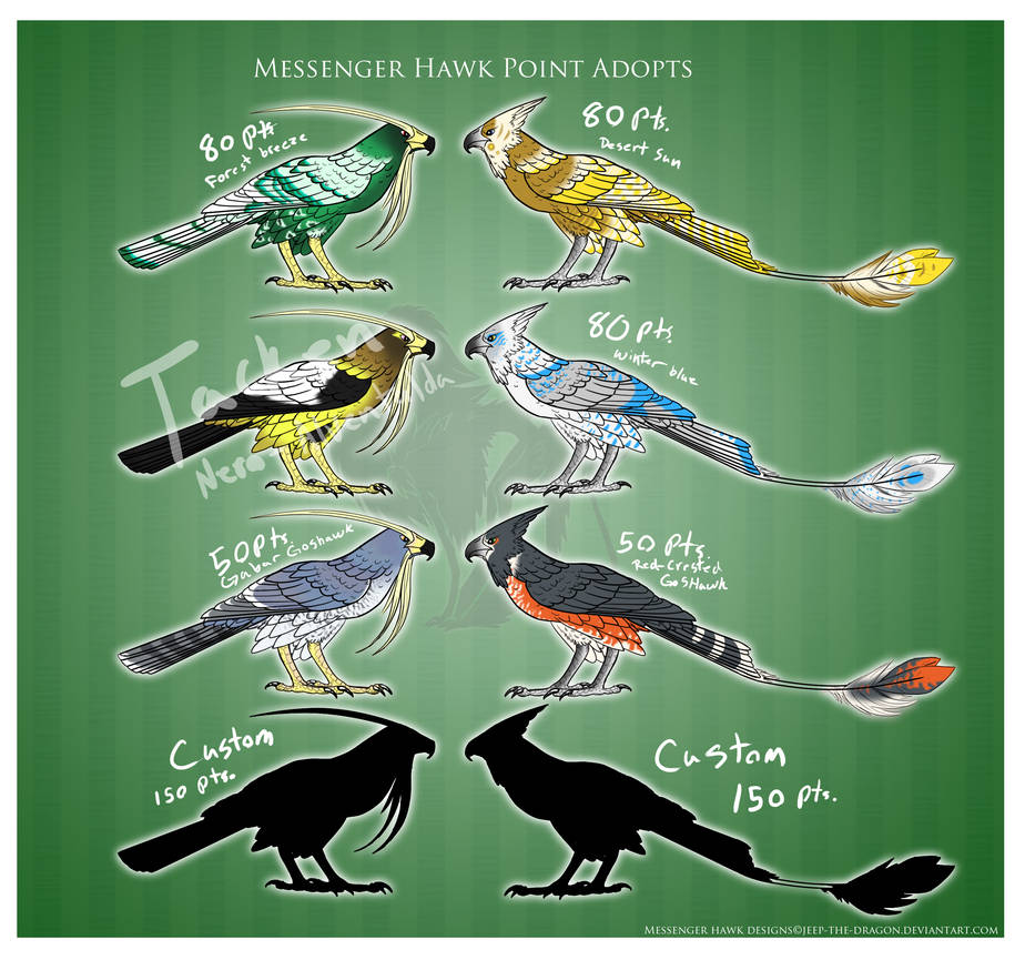 Messenger Hawk (Closed) sheet 1 by Jeep-The-Dragon on DeviantArt