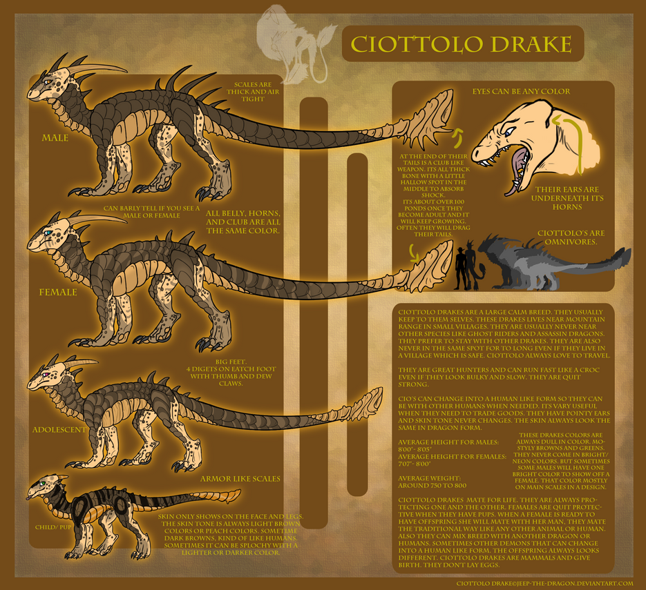 Ciottolo Drake Species ref Sheet by Jeep-The-Dragon